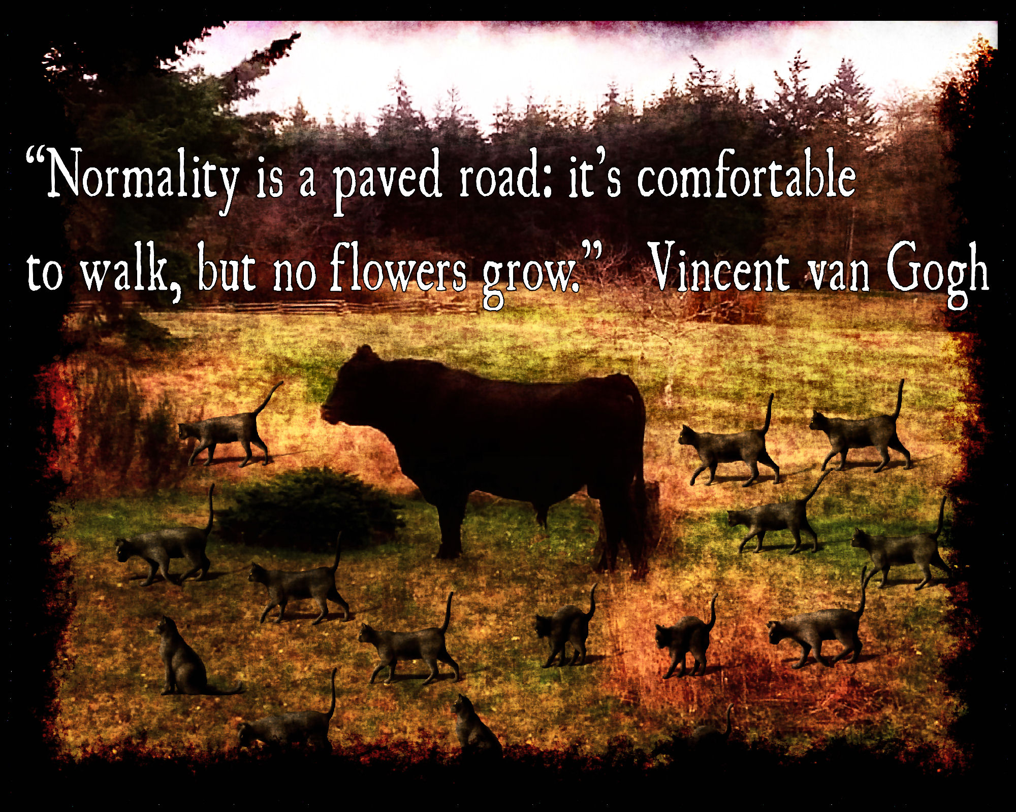 Quote by Vincent van Gogh, Normality is a paved road: it's comfortable to walk, but no flowers grow.